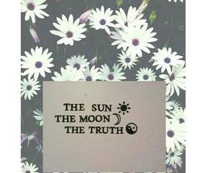 daisy, moon, and sun image
