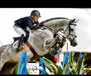 horse, show jumping, and best rider image