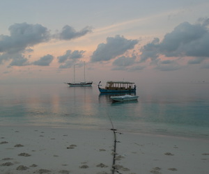 beach, boat, and boats image