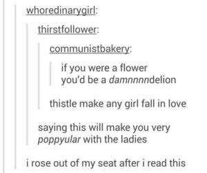 blossom, dandelion, and flirt image
