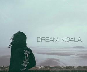 music and dream koala image
