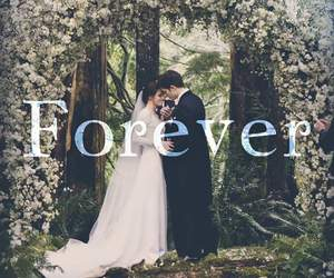 bella, forever, and saga image