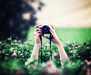camera, flowers, and photo image