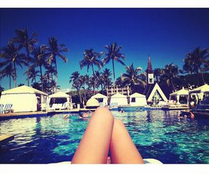 holiday, palm tree, and resort image