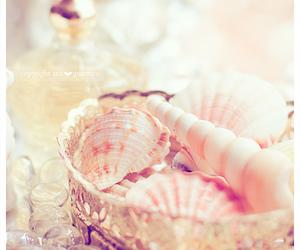 shells, bracelet, and pretty image