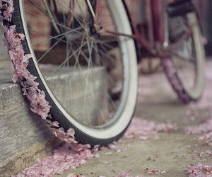 flowers, bike, and pink image
