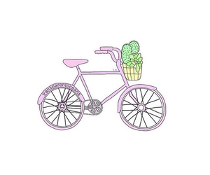 cactus, pink, and bicycle image