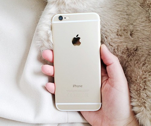 apple, cool, and gold image