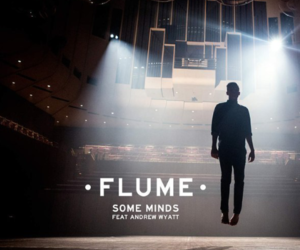 flume, man, and music image
