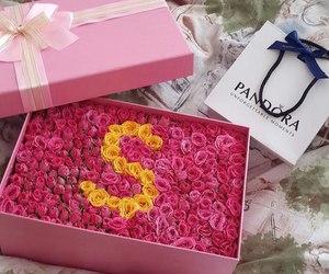 flowers, rose, and pandora image
