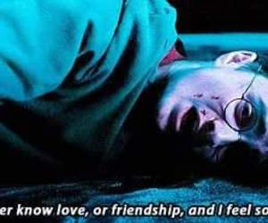 friendship, harry potter, and love image