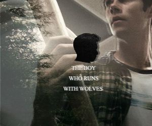 the boy, stiles, and teen wolf image