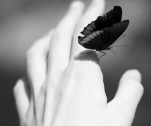 butterfly, sadness, and people image