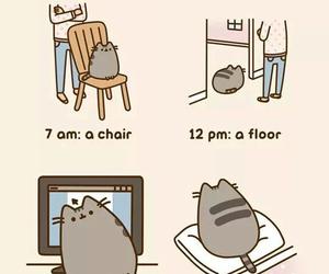 pusheen and cat image