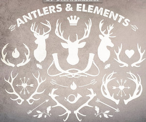 antler, deer, and clipart image