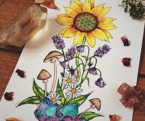 drawing and sunflower image