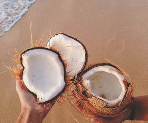 coconut, summer, and beach image