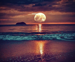 beach, beautiful, and peaceful image