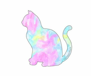 cat, overlay, and png image
