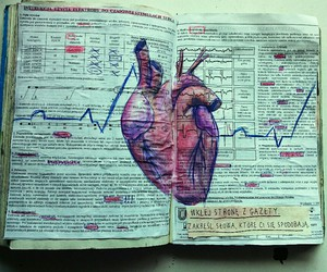 heart, book, and art image