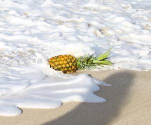 pineapple, beach, and sea image