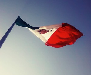 flag, green, and mexican image