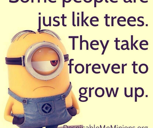 minions, true, and funny image