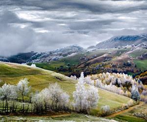 nature, romania, and winter image