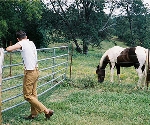 nature, boy, and horse image