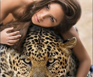 animals, leopards, and girl image