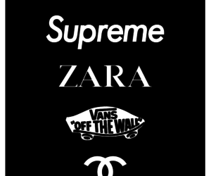 black and white, Zara, and brands image