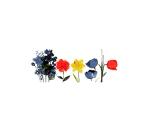 colorful, flower, and illustration image
