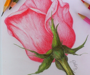 colored pencils, draw, and drawing image