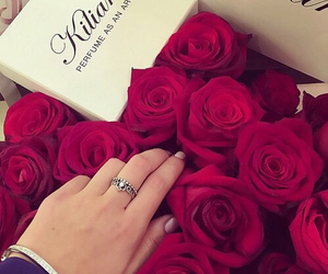 roses, ring, and couple image
