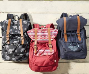 bags, fashion, and hollister image