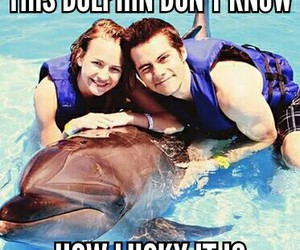 couple, dolphin, and lucky image