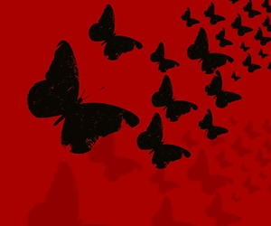 butterfly, fondos, and red image