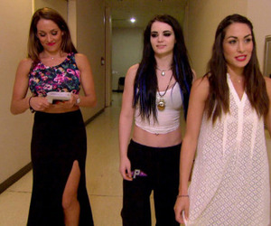 friend, paige, and brie bella image