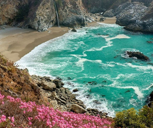 blue, sea, and flowers image