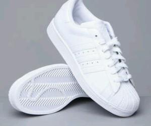 adidas superstar white image