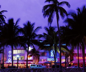 Miami, purple, and summer image