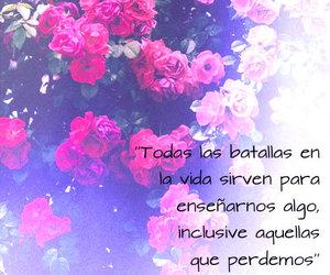 amor, paulo coelho, and tumblr image