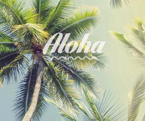 Aloha, summer, and wallpaper image