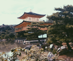 golden, happiness, and japan image