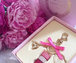 pink, flowers, and laduree image