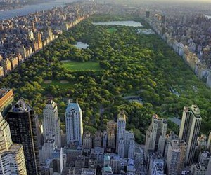 buildings, Central Park, and manhattan image