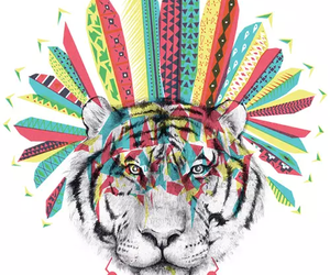 fierce, lion, and indie image