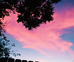 aesthetic, california, and cotton candy image