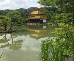 earth, kyoto, and nature image