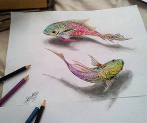 fish, art, and drawing image